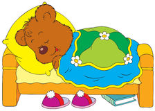 Sleeping bear. Vector clip-art / Children's book illustration for your design Royalty Free Stock Photography
