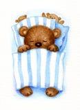 Sleeping  bear. Stock Photo