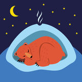 Sleeping bear. A cute cartoon bear sleeping in the winter in his den Royalty Free Stock Photo