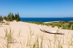 Sleeping Bear Dunes Driftwood Royalty Free Stock Photography