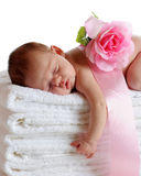 Sleeping Beauty. A beautiful newborn sleeping soundly on a stack of white towels, a ribbon and pink rose on her back Stock Image
