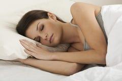 Free Sleeping Beauty Royalty Free Stock Photos - 14638958