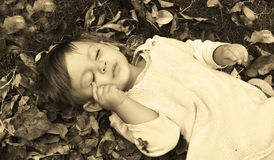 Sleeping beauty. Beautiful girl laing in the leaves Royalty Free Stock Photo