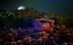 Sleeping Beauty. Beautiful sleeping girl in a garden lit by fire lights and full moon light. Night environment with stars in the sky and flowers and plants Royalty Free Stock Photography