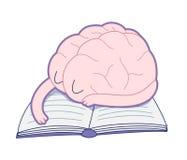 Sleeping brain, Brain collection Royalty Free Stock Photo