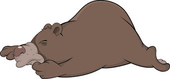 Sleeping brown bear Royalty Free Stock Photography