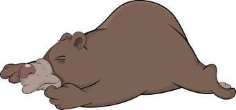 Sleeping brown bear Royalty Free Stock Photography
