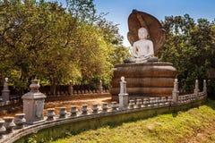 Sleeping Buddha statue close to Sigiraya, lion rock and pidurangala in Sri Lanka stock photography