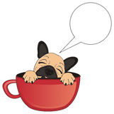 Sleeping bulldog on cup with clean callout Royalty Free Stock Photo