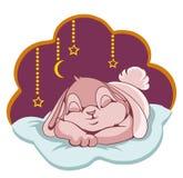Sleeping Bunny Stock Photos