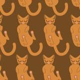 Sleeping cat seamless pattern. Pet background. Animal ornament Royalty Free Stock Image
