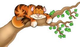 Sleeping cat on tree branch vector illustration