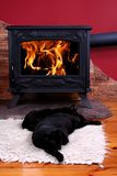 Sleeping cats in front of fire. A worm evening, cats sleeping in front of fire stock photography