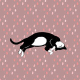 Sleeping cats pattern seamless in vector. Royalty Free Stock Photo
