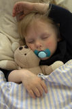 Sleeping child. With teddy bear and pacifier Royalty Free Stock Photos
