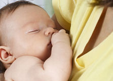 Sleeping child in the arms of Mom. Isolated Royalty Free Stock Photos
