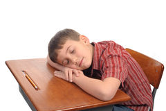 Sleeping in class Stock Images