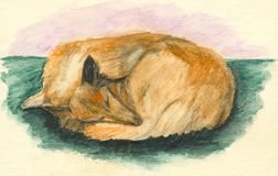 Sleeping collie dog. Watercolor Stock Photo