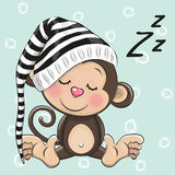 Sleeping cute Monkey in a hood Stock Photo