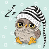 Sleeping cute Owl Stock Photos