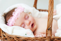 Sleeping cutie. Royalty Free Stock Photos