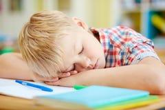 Sleeping on desk Stock Photography