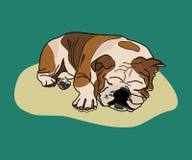 Sleeping dog funky graphic illustration