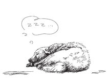 Sleeping dog sketch Stock Images