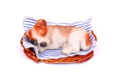 Sleeping Dog Toy Royalty Free Stock Image