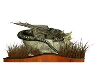 Sleeping Dragon. Digital render of a sleeping dragon lying on a rock surrounded by long grass. Isolated on a wooden plinth vector illustration