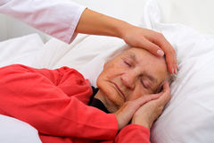 Sleeping elderly. Portrait of a beautiful sleeping elderly lady Royalty Free Stock Photos