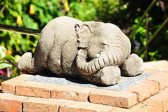 Sleeping elephant Stock Photos