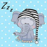 Sleeping Elephant Royalty Free Stock Photo