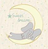 Sleeping elephant Stock Photo
