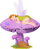 Sleeping elf Royalty Free Stock Photo
