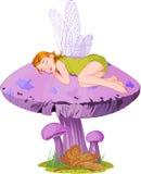 Sleeping elf. Little cute fairy elf sleeping on mushroom Royalty Free Stock Photo