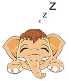 Sleeping face of mammoth with symbols z. Happy sleeping muzzle of mammoth around a lot of letters z Royalty Free Stock Photo