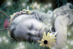 Sleeping Fairy's Nightlights. A woodland fairy sleeps peacefully as fireflies act as her nightlights Royalty Free Stock Photo