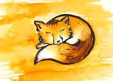 Sleeping fox Royalty Free Stock Photos