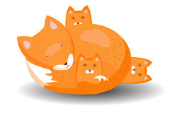 Sleeping fox with three cubs. On white background Stock Images