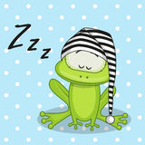 Sleeping Frog Royalty Free Stock Image