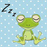 Sleeping Frog Royalty Free Stock Photography