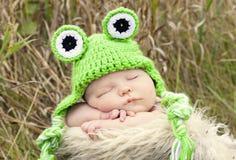 Sleeping frog stock photo