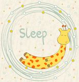 Sleeping giraffe Stock Image