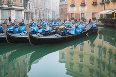 Sleeping Gondolas in Venice with reflection Stock Images