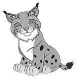 Sleeping gray lynx Stock Photo