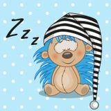 Sleeping Hedgehog Stock Image