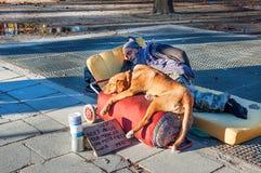 Sleeping homeless man Stock Photography