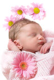 Sleeping infant Royalty Free Stock Photo