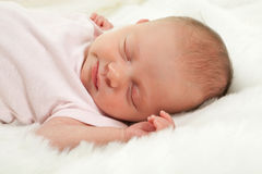 Sleeping innocence Stock Images